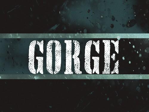 GORE 2
